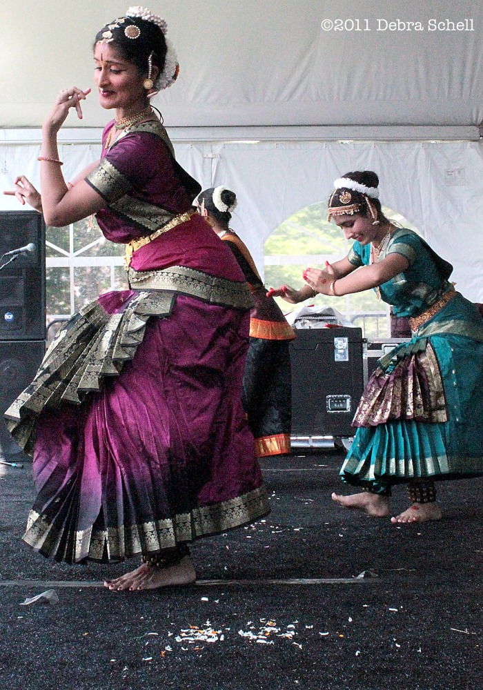 Festival of India- Harrisburg's Multicultural Festival  (5/5)