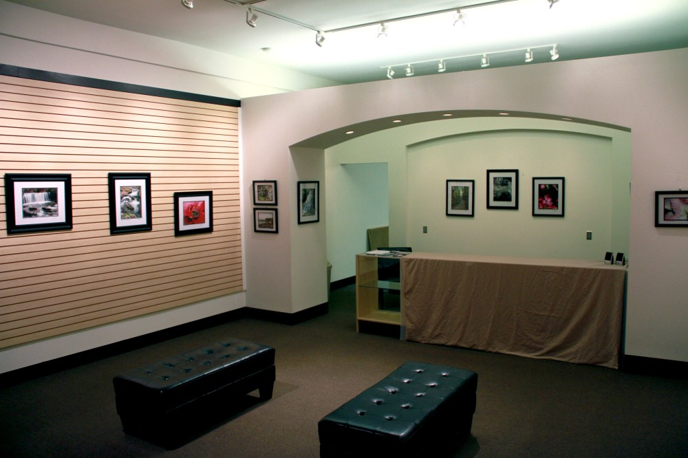 Willow Suites Gallery 1