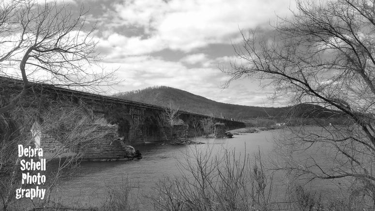 B&W River Shot_WEB-1_edited-1