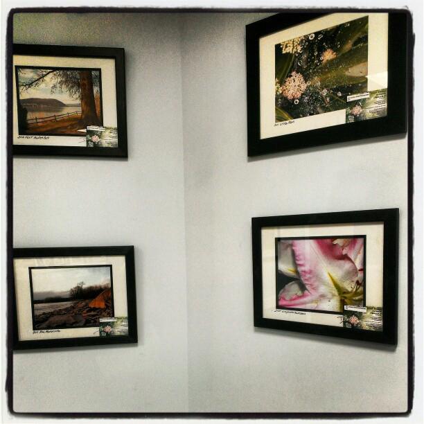 LDA Photography Exhibit pic
