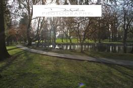 Longs Park 4_edited-1
