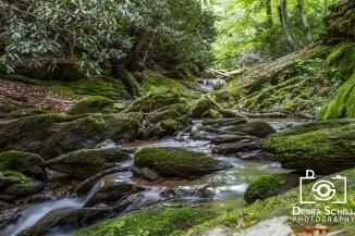 Mill Creek Falls-13web