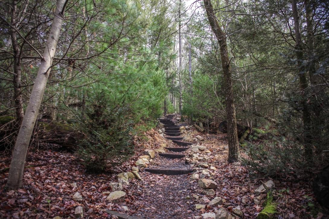 Caledonia State Park 12.24.17 2