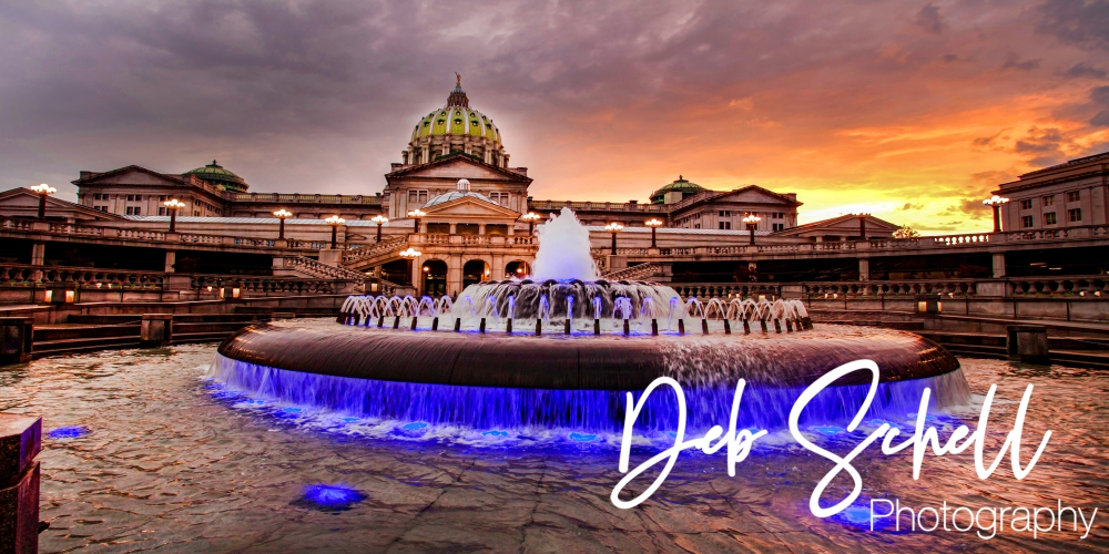 3 Harrisburg Fountain 24x12 Print Size 20x36 Framed SIG